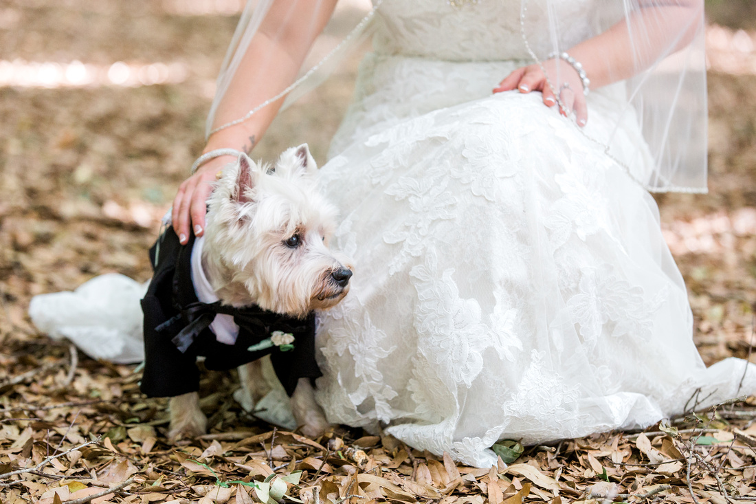 Bridal portraits. Tampa Wedding Photographer. Casa Lantana Wedding.