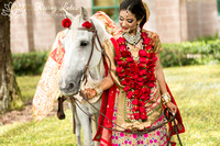 Aneeta and Kristain: Indian Wedding