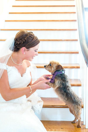 The Obici House wedding. Bride and groom with their dog/ ring bearer. Virginia wedding photographer