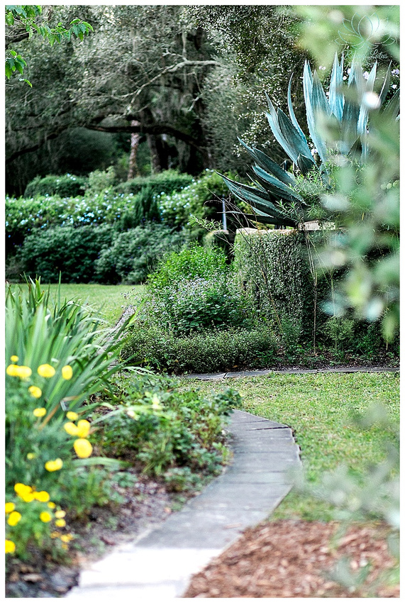 Photo of landscaped pathway at Bok Tower