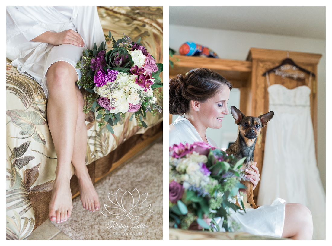 Bride With Dog Chihuahua Lakeland Fl Photos Rising Lotus Photography