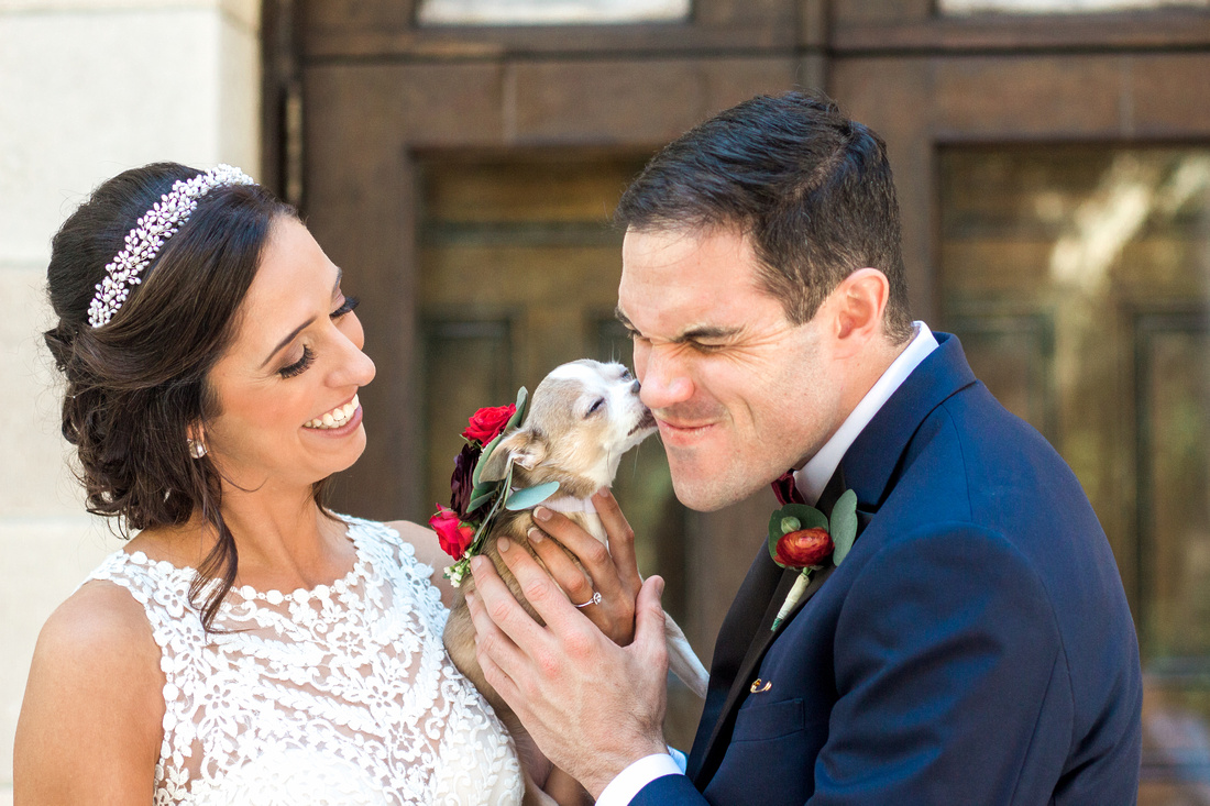 Photos of bride and groom with their dog, dogs in weddings, Powel Crosley Estate. Tampa Wedding Photographer.