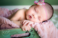 Newborn Collections: Such  Darlings